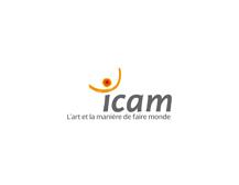 ICAM Lille - Enseignement Supply Chain